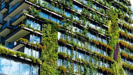 Sustainable Facade